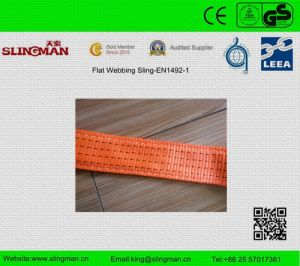 En1492-1 Single Ply Endless Web Sling (TS-W12-1) pictures & photos