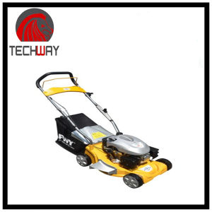 Tw-Xym1581cp 16inch Gasoline Lawn Mower pictures & photos