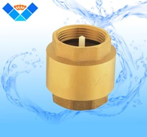 "Check Valve High Quality Plastic Core From Size 1/2"" to 4"""