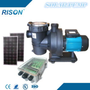 Popular Solar Swimming Pool Pump (1.5HP - 31m3/hr - 19m) pictures & photos