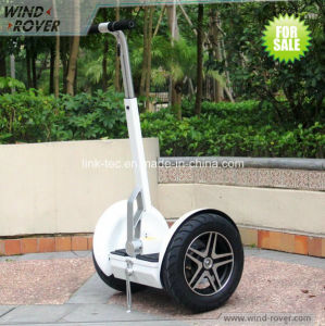 Wind Rover 72V Ninebot China Drifting Scooter pictures & photos