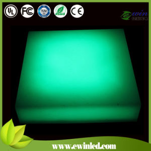 IP68 Outdoor Blue LED Brick for Park Ligting pictures & photos