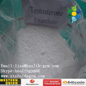 Female Bodybuilder Anti Estrogen Fat Burning Steriods 315-37-7 Test Enanthate
