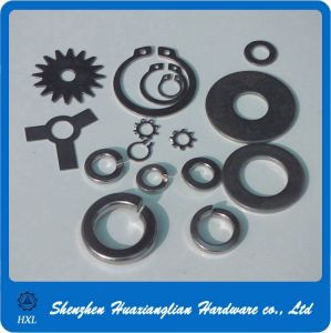 Different Type of Stainless Steel 304 316 Pin Lock Washer pictures & photos