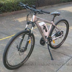 """29""""350W Mountain Electric Bike (TDB09Z) pictures & photos"""