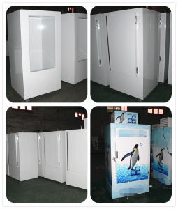 Freezer Ice Hielo Merchandiser with Single Single Door pictures & photos