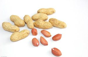 First Grade Peanut Kernels with Red Skin pictures & photos