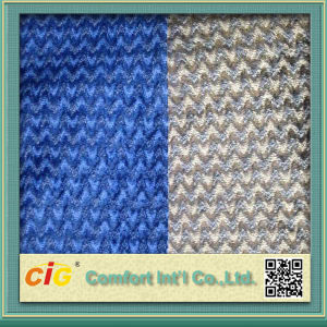 100% Polyester Jacquard Auto/Sofa Fabric pictures & photos