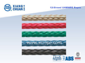 Lr Approved 12 Strand UHMWPE (PE) Rope pictures & photos