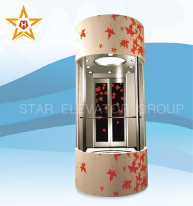 Panoramic Elevator with Color Decoration Patterns Xr-G06