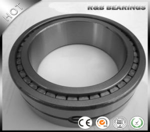 Double Row Full, Double Row Full Complemomplement Cylindrical Roller Bearing SL014912, SL01 4912/ Nnc 4912, Nnc4912V, pictures & photos