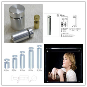 Stainless Steel Advertisement Nails Glass Wall Connector Standoff pictures & photos