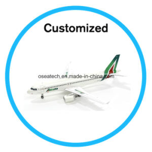 Customizedbig Boeing Airbus Scale Model Aircraft pictures & photos