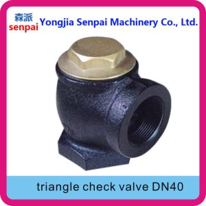 Gas Station Product Triangle Check Valve Angle Check Valve pictures & photos
