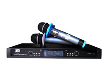 Professional Wireless Microphone U500 pictures & photos
