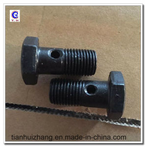 Black/ Golden Iron Bolt Joint Galvanized in Hot Sale