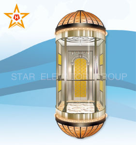 Panoramic Elevator with Color Decoration Patterns Xr-G06 pictures & photos