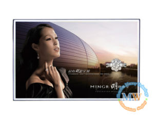 20 Inch Open Frame LCD Digital Signage pictures & photos