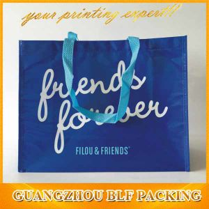 Custom Color Printing Non Woven Bag Logo Shopping (BLF-PB353) pictures & photos