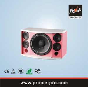 Professional Speaker Three Way Loudspeaker System KTV Series Wise-101 pictures & photos