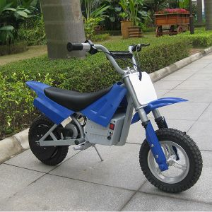 China Factory Electric Mini Dirt Bike for Young Kids (DX250) pictures & photos