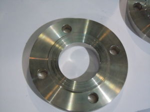 Factory Price Stainless Steel Flange pictures & photos