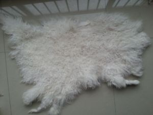 Tibet Sheepskin Manufacturers/Sheep Skin Fur Plate pictures & photos