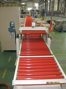 Roller and Belt Conveyor System Manufacturer pictures & photos