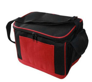 OEM New Design Summer Cooler Bag pictures & photos