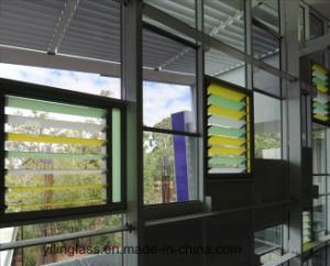 Elegant Silk-Screen Printed Glass for Louvre Shutter Blinds pictures & photos