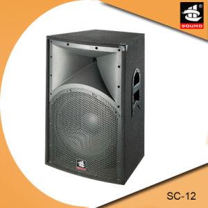 Sc-12 Professional Stage Speaker DJ Equipment pictures & photos