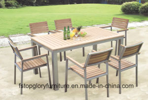 Garden/Patio Dining Table and Chairs for Outdoor Furniture (TG-021) pictures & photos