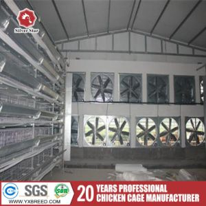 Poultry Equipment Layer Farming Cage with Ventilation Pads pictures & photos