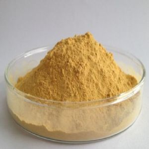 High Quality Tea Polyphenol (CAS 84650-60-2) pictures & photos