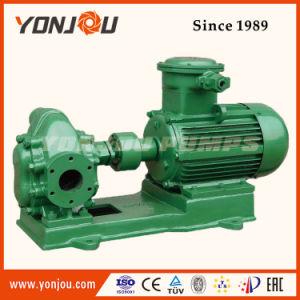 Explosion Proof Gear Pump, Industrial Oil Pump, Vegetable Oil Pump pictures & photos