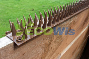 Outdoor Yard Fence and Wall Spikes (HT5607) pictures & photos