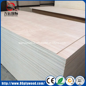 E1 E2 Grade Mahogany/ Okoume Poplar Plywood with Export Quality pictures & photos