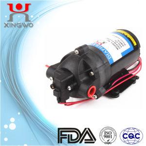 Electric Mirco Diaphragm Agriculture Pump 5L/Min (DP002A2)