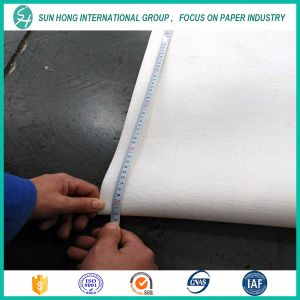 Bom Single Layer Press Felt for Paper Making pictures & photos