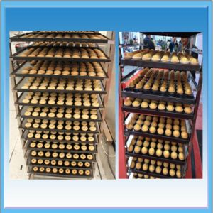 High Efficiency Commercial Bakery Gas Oven pictures & photos