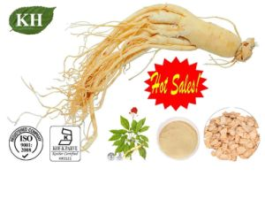 Natural American Ginseng Extract for Anxiety Relief pictures & photos