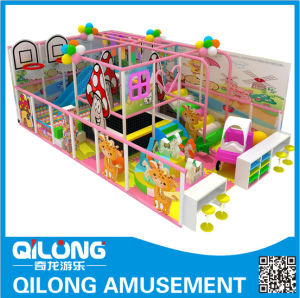 Colorful Design for Indoor Playground Equipment (QL-1126N) pictures & photos