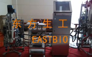Customized Pilot Scale Mechanical Stirred Fermenter pictures & photos