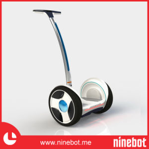 China Electric Chariot with Less Competitor pictures & photos