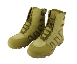 Marine Corps Boot pictures & photos