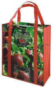 Non-Woven Bag (SG12-6S023) pictures & photos