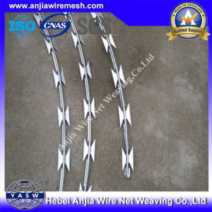 Hot DIP Galvanized Razor Wire with (CE and SGS) pictures & photos