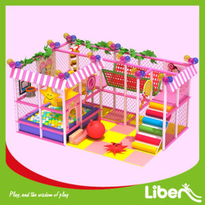 Baby Favorite Pink Indoor Playground with Cute Design Features pictures & photos