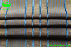 Stripe Velvet Sofa Fabric (BS4001) pictures & photos
