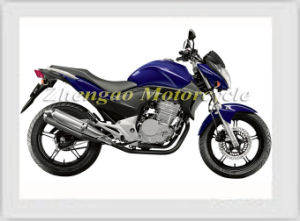 250cc Racing Motorcycle CB300r for Sports pictures & photos